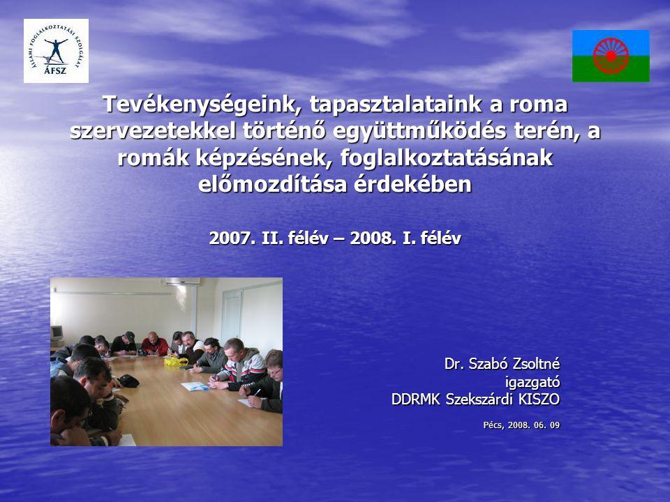 Tevékenységeink, tapasztalataink a roma szervezetekkel történő együttműködés terén, a romák képzésének, foglalkoztatásának előmozdítása érdekében 2007.