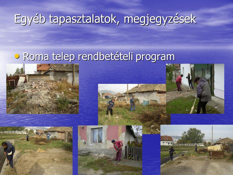 Egyéb tapasztalatok, megjegyzések Roma telep rendbetételi program Roma telep rendbetételi program