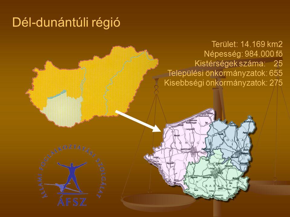 Terület: 14.169 km2 Népesség: 984.000 fő Kistérségek száma: 25 Települési önkormányzatok: 655 Kisebbségi önkormányzatok: 275 Dél-dunántúli régió