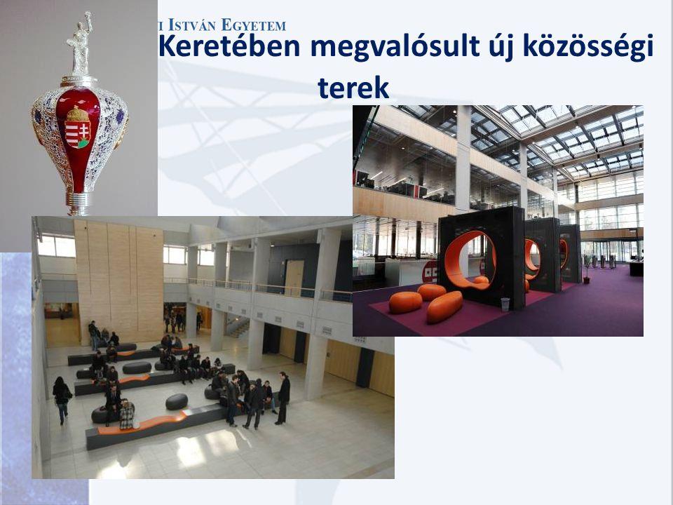 Intézményfejlesztési pályázati projektek alapadatai 20 feletti egyetemfejlesztési projekt összehangolt végrehajtása (2006-13) 3 projekt lezárult, 18 p