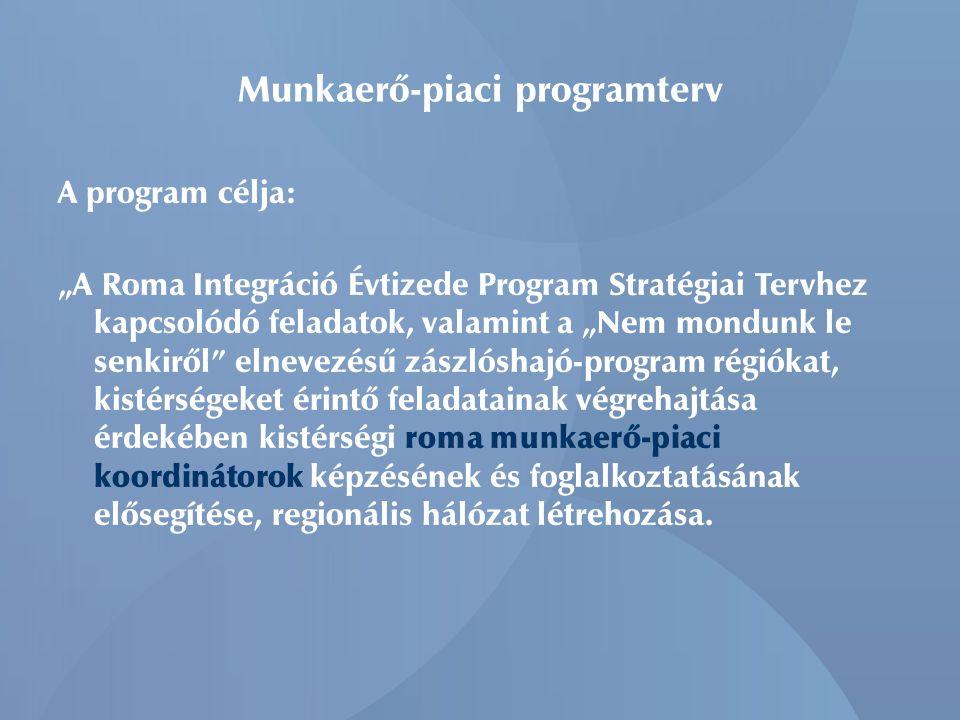 """Munkaerő-piaci programterv A program célja: """"A Roma Integráció Évtizede Program Stratégiai Tervhez kapcsolódó feladatok, valamint a """"Nem mondunk le senkiről elnevezésű zászlóshajó-program régiókat, kistérségeket érintő feladatainak végrehajtása érdekében kistérségi roma munkaerő-piaci koordinátorok képzésének és foglalkoztatásának elősegítése, regionális hálózat létrehozása."""