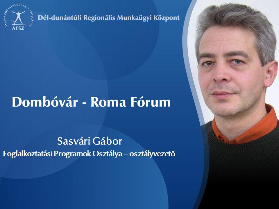 Sasvári Gábor Foglalkoztatási Programok Osztálya – osztályvezető Dombóvár - Roma Fórum