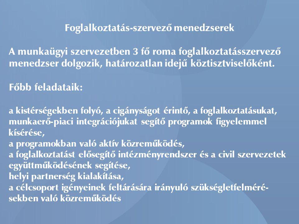 Foglalkoztatás-szervező menedzserek A munkaügyi szervezetben 3 fő roma foglalkoztatásszervező menedzser dolgozik, határozatlan idejű köztisztviselőkén