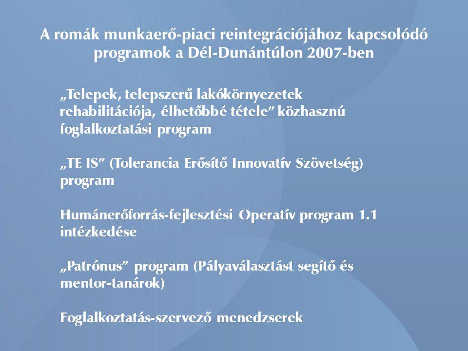 """A romák munkaerő-piaci reintegrációjához kapcsolódó programok a Dél-Dunántúlon 2007-ben """"Telepek, telepszerű lakókörnyezetek rehabilitációja, élhetőbb"""