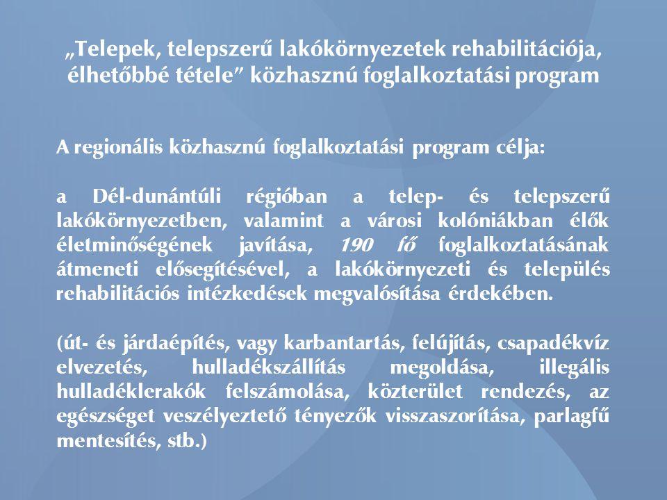 """""""Telepek, telepszerű lakókörnyezetek rehabilitációja, élhetőbbé tétele közhasznú foglalkoztatási program A regionális közhasznú foglalkoztatási program célja: a Dél-dunántúli régióban a telep- és telepszerű lakókörnyezetben, valamint a városi kolóniákban élők életminőségének javítása, 190 fő foglalkoztatásának átmeneti elősegítésével, a lakókörnyezeti és település rehabilitációs intézkedések megvalósítása érdekében."""