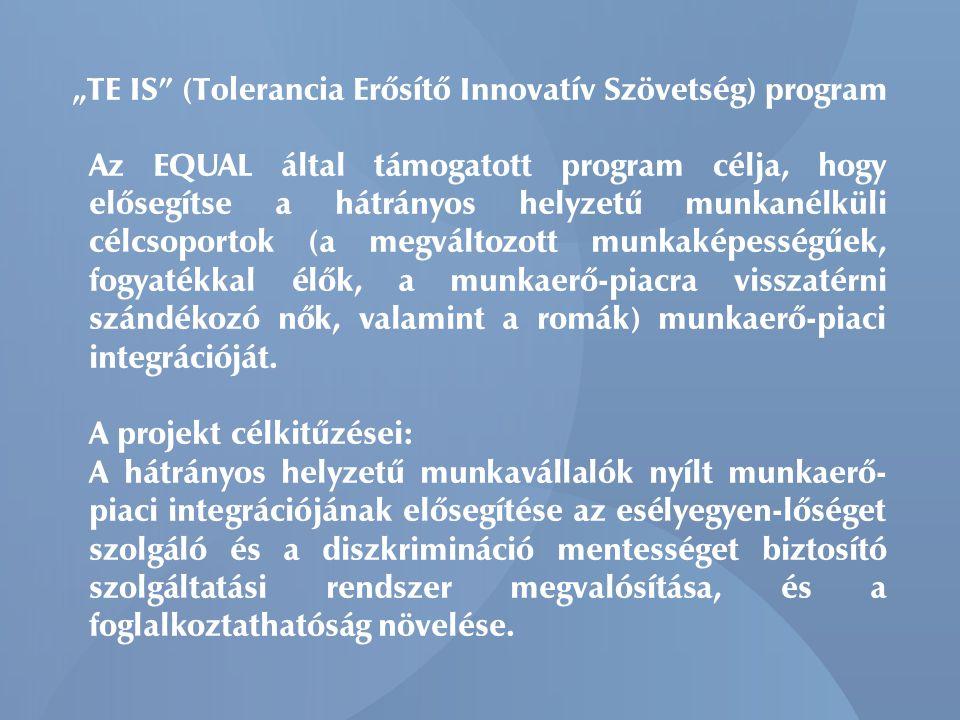 """""""TE IS (Tolerancia Erősítő Innovatív Szövetség) program Az EQUAL által támogatott program célja, hogy elősegítse a hátrányos helyzetű munkanélküli célcsoportok (a megváltozott munkaképességűek, fogyatékkal élők, a munkaerő-piacra visszatérni szándékozó nők, valamint a romák) munkaerő-piaci integrációját."""