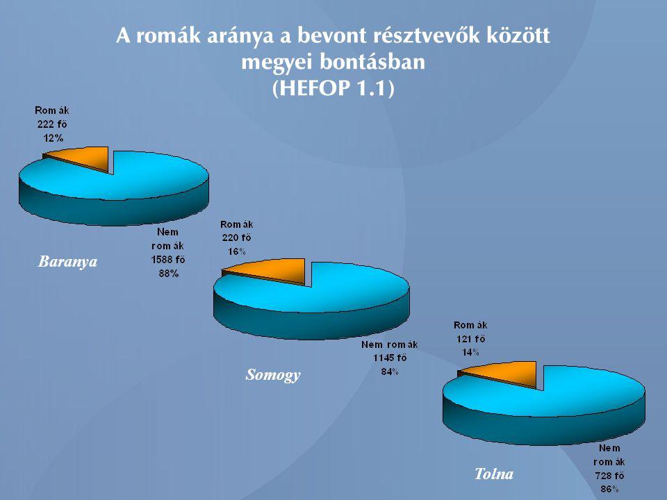 A romák aránya a bevont résztvevők között megyei bontásban (HEFOP 1.1) Baranya Somogy Tolna