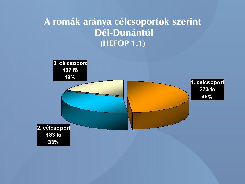 A terv / tény adatok a bevont roma célcsoportra vetítve (HEFOP 1.1) Dél-Dunántúl, 2007. december