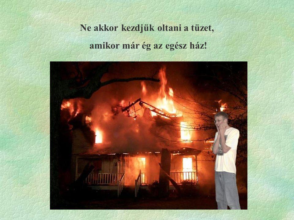 Ne akkor kezdjük oltani a tüzet, amikor már ég az egész ház!