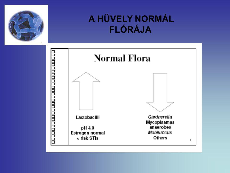 A HÜVELY NORMÁL FLÓRÁJA