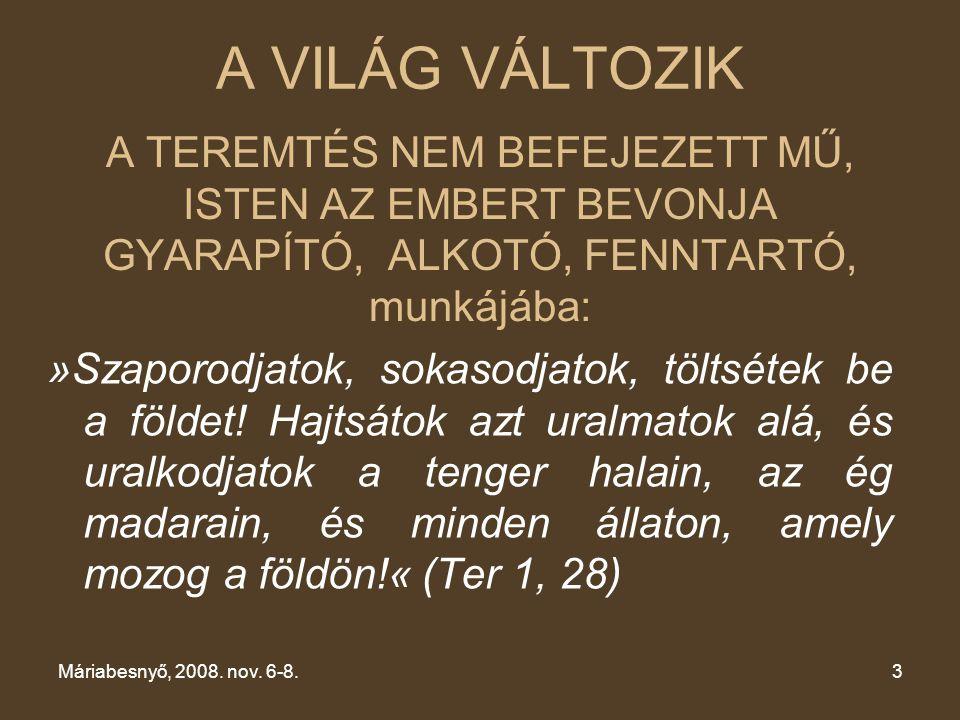 A TEREMTÉS NEM BEFEJEZETT MŰ, ISTEN AZ EMBERT BEVONJA GYARAPÍTÓ, ALKOTÓ, FENNTARTÓ, munkájába: Máriabesnyő, 2008. nov. 6-8.3 »Szaporodjatok, sokasodja
