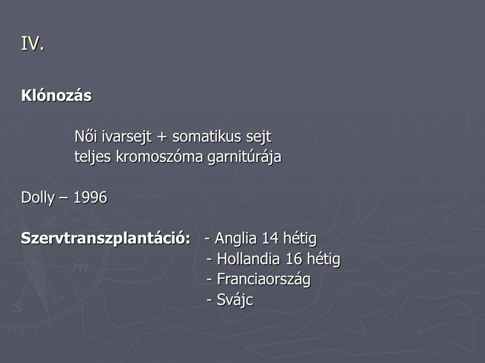 IV. Klónozás Női ivarsejt + somatikus sejt Női ivarsejt + somatikus sejt teljes kromoszóma garnitúrája teljes kromoszóma garnitúrája Dolly – 1996 Szer