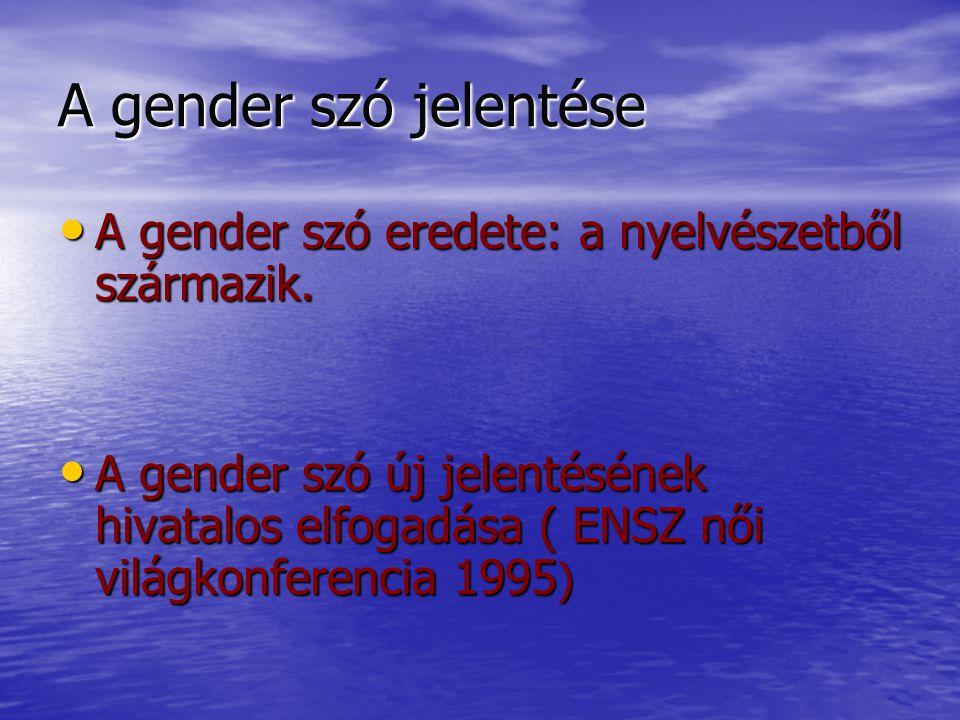 Gender mainstreaming Az 1960- 70-es években alakult ki - új radikális feminista irányzat.