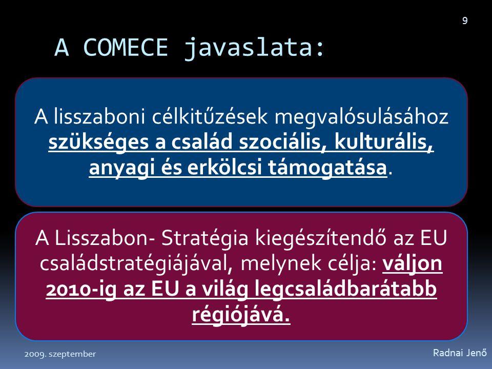 A COMECE családpolitikai stratégiai javaslatai 2004 márciusából (Ecclesia in Europa 91) Radnai Jenő 10 II.
