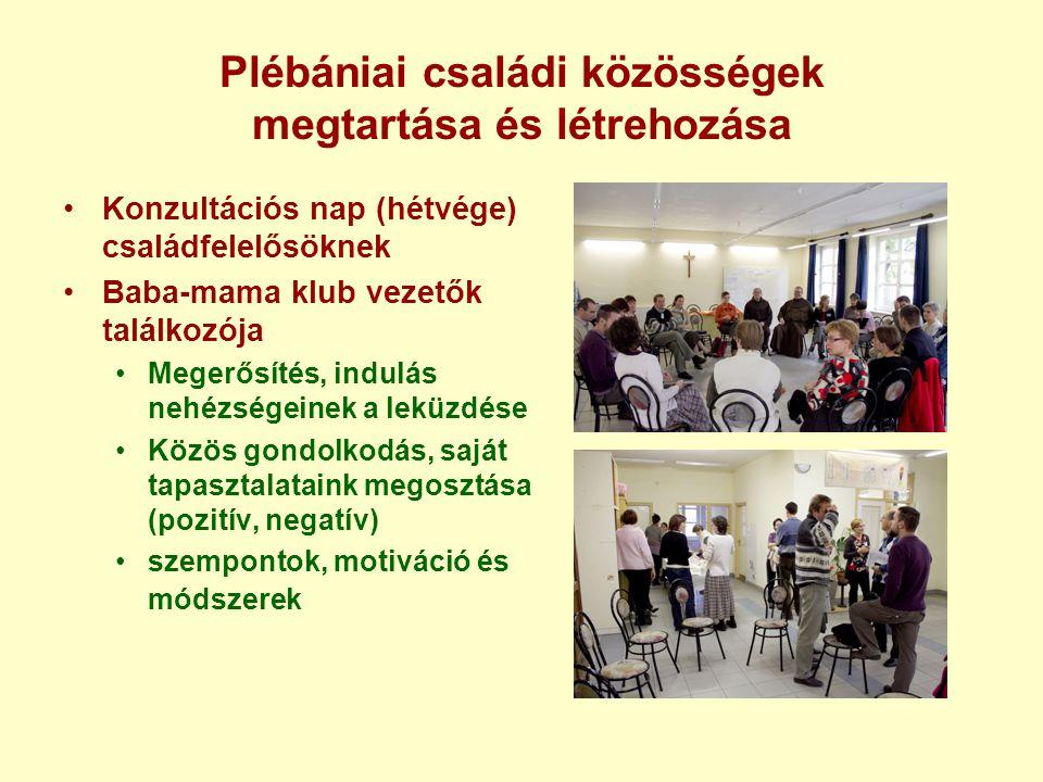 Plébániai családi közösségek megtartása és létrehozása Konzultációs nap (hétvége) családfelelősöknek Baba-mama klub vezetők találkozója Megerősítés, i