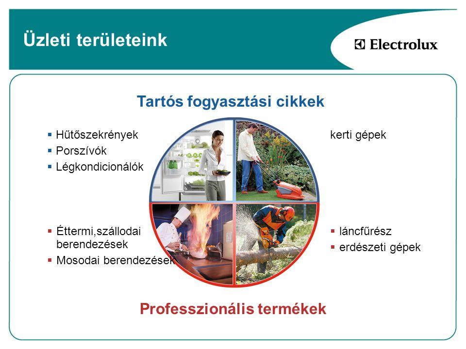 Üzleti területeink Tartós fogyasztási cikkek Professzionális termékek  láncfűrész  erdészeti gépek kerti gépek  Hűtőszekrények  Porszívók  Légkon