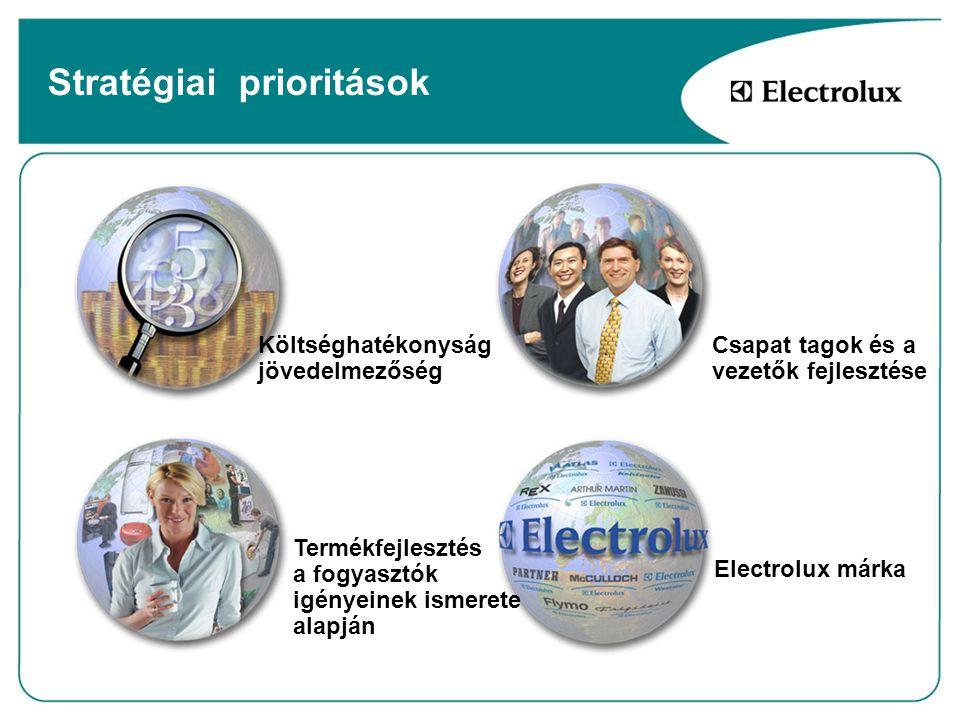 Költséghatékonyság, jövedelmezőség Termékfejlesztés a fogyasztók igényeinek ismerete alapján Electrolux márka Csapat tagok és a vezetők fejlesztése St