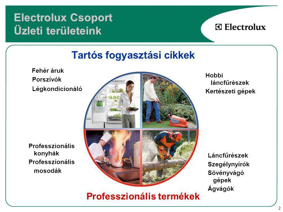 2 Tartós fogyasztási cikkek Professzionális termékek Fehér áruk Porszívók Légkondicionálók Hobbi láncfűrészek Kertészeti gépek Professzionális konyhák Professzionális mosodák Láncfűrészek Szegélynyírók Sövényvágó gépek Ágvágók