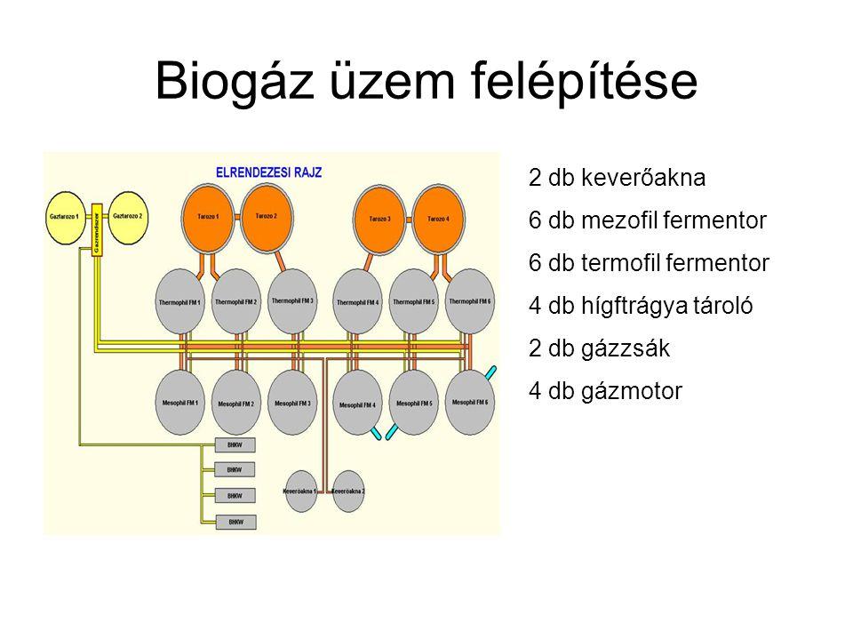 Biogáz üzem felépítése 2 db keverőakna 6 db mezofil fermentor 6 db termofil fermentor 4 db hígftrágya tároló 2 db gázzsák 4 db gázmotor