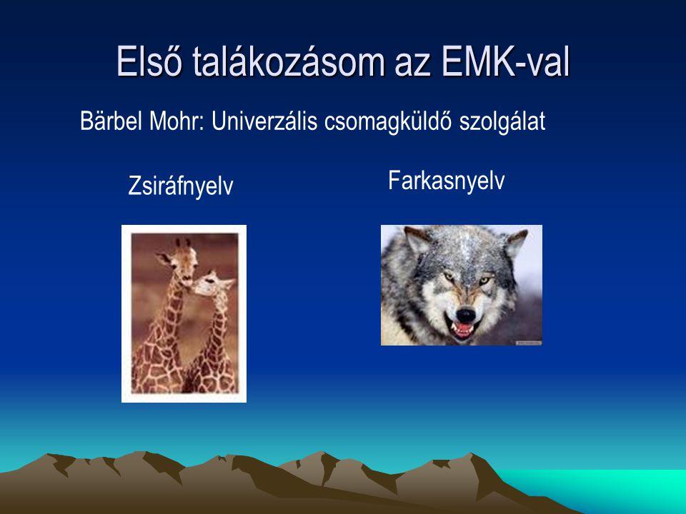 Első talákozásom az EMK-val Bärbel Mohr: Univerzális csomagküldő szolgálat Zsiráfnyelv Farkasnyelv