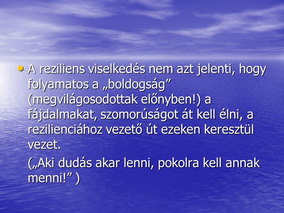 """A reziliens viselkedés nem azt jelenti, hogy folyamatos a """"boldogság"""" (megvilágosodottak előnyben!) a fájdalmakat, szomorúságot át kell élni, a rezili"""
