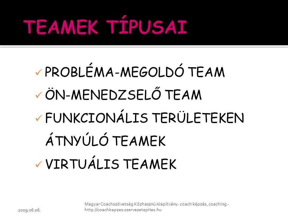 PROBLÉMA-MEGOLDÓ TEAM ÖN-MENEDZSELŐ TEAM FUNKCIONÁLIS TERÜLETEKEN ÁTNYÚLÓ TEAMEK VIRTUÁLIS TEAMEK 2009.06.06. Magyar Coachszövetség Közhasznú Alapítvá