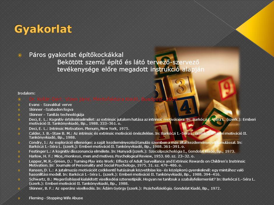  Páros gyakorlat építőkockákkal Bekötött szemű építő és látó tervező-szervező tevékenysége előre megadott instrukció alapján Irodalom:  Dr. Kollár-D