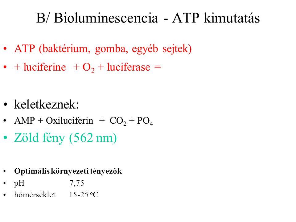 B/ Bioluminescencia - ATP kimutatás ATP (baktérium, gomba, egyéb sejtek) + luciferine + O 2 + luciferase = keletkeznek: AMP + Oxiluciferin + CO 2 + PO