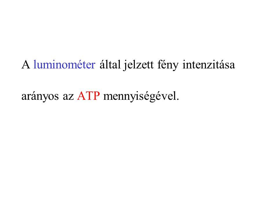 C/ Mikororganizmusok kimutatása tenyésztéssel 1.Felület lenyomatának vizsgálata táptalajjal 2.