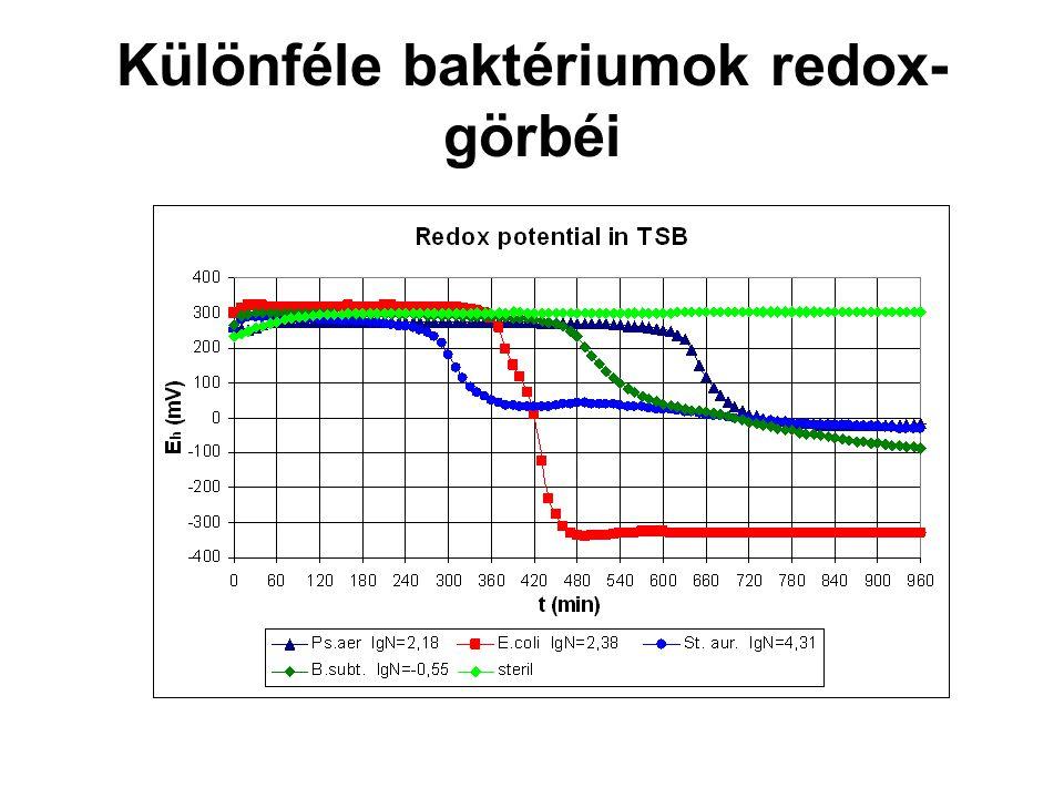 Különféle baktériumok redox- görbéi
