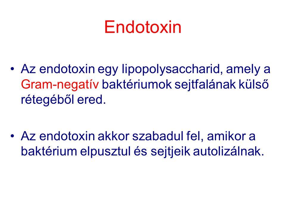 Limulus reakció Endotoxin (Gram negatív baktérium) + Limulus polyphaemus haemolympha (haemocianin+Cu komplex) Eredmény: az elegy folyékonyból gél állapotba vált (mennyiségi meghatározás hígítással)