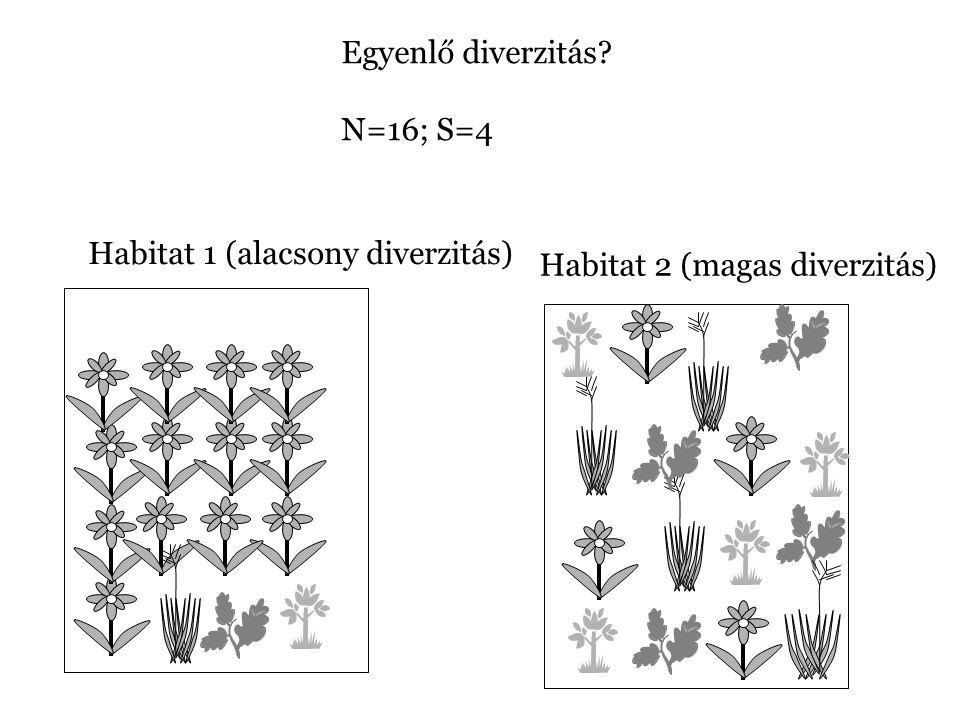 Egyenlő diverzitás? N=16; S=4 Habitat 1 (alacsony diverzitás) Habitat 2 (magas diverzitás)