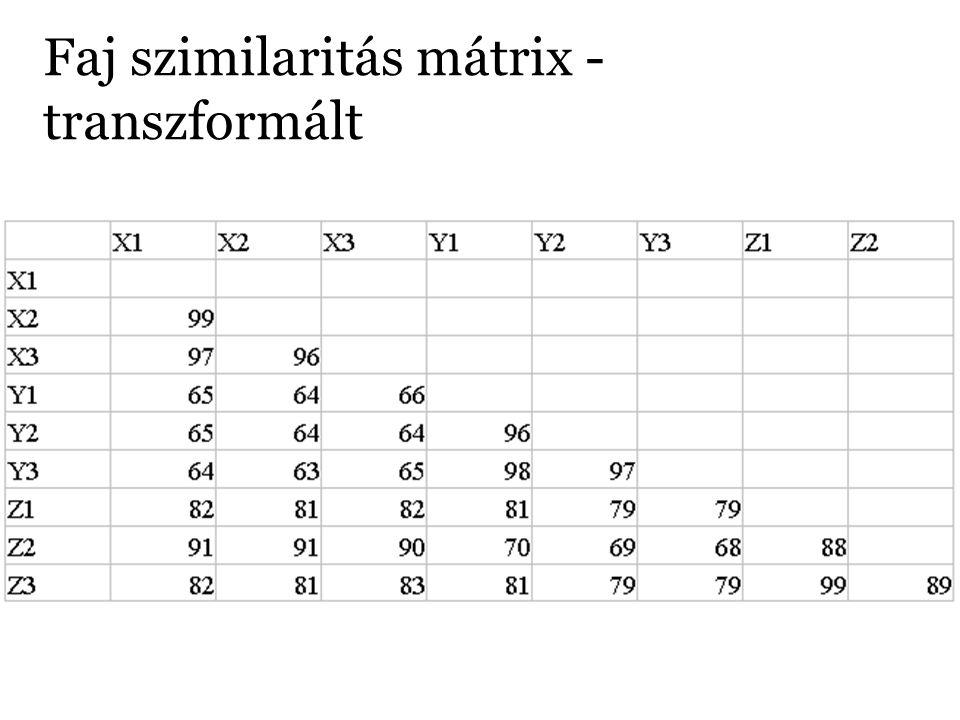 Faj szimilaritás mátrix - transzformált