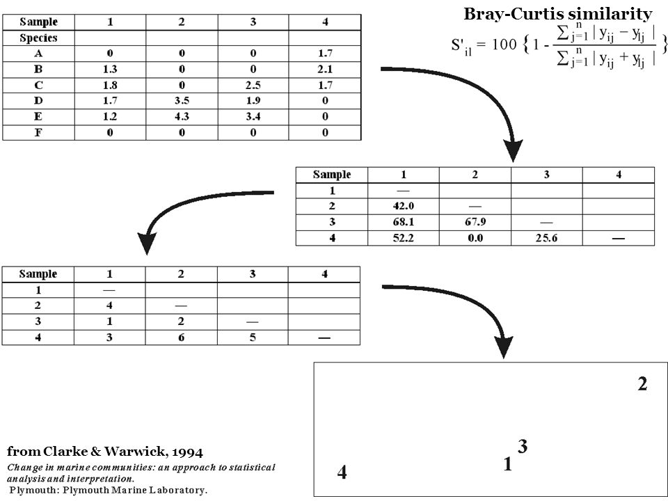 Bray-Curtis similarity from Clarke & Warwick, 1994