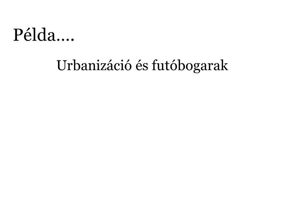 Példa…. Urbanizáció és futóbogarak