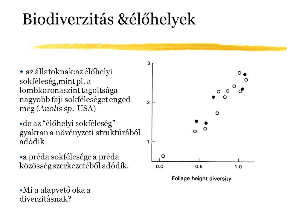 Biodiverzitás &élőhelyek az állatoknak:az élőhelyi sokféleség,mint pl. a lombkoronaszint tagoltsága nagyobb faji sokféleséget enged meg (Anolis sp.-US