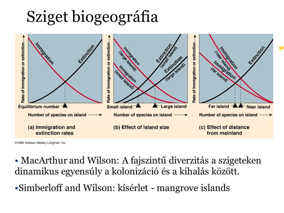 Sziget biogeográfia MacArthur and Wilson: A fajszintű diverzitás a szigeteken dinamikus egyensúly a kolonizáció és a kihalás között. Simberloff and Wi