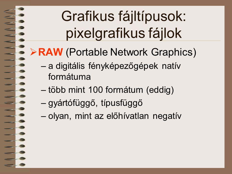 Grafikus fájltípusok: pixelgrafikus fájlok  RAW (Portable Network Graphics) –a digitális fényképezőgépek natív formátuma –több mint 100 formátum (edd