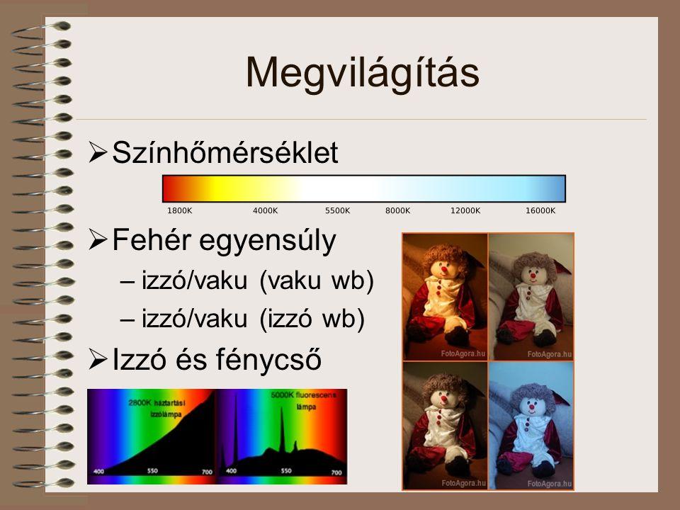 Megvilágítás  Színhőmérséklet  Fehér egyensúly –izzó/vaku (vaku wb) –izzó/vaku (izzó wb)  Izzó és fénycső