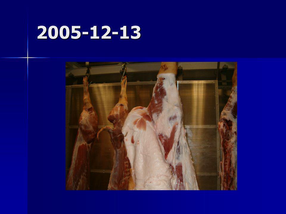 2005-12-13