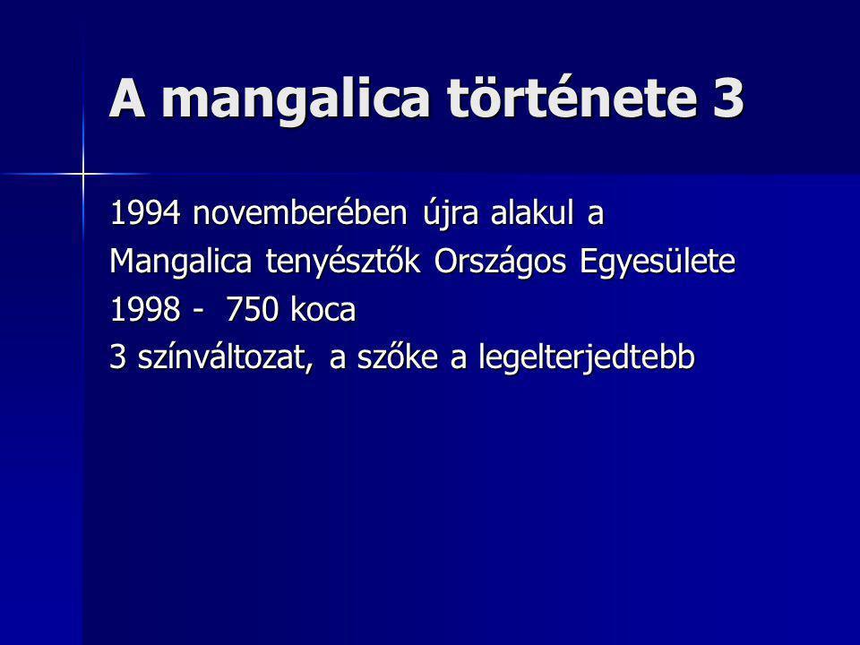 A mangalica története 3 1994 novemberében újra alakul a Mangalica tenyésztők Országos Egyesülete 1998 - 750 koca 3 színváltozat, a szőke a legelterjedtebb