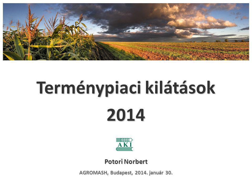 Tartalékok várható alakulása az Európai Unióban (2013/2014 vs 2012/2013) Búza + Kukorica + Árpa 31,3 mio t (+22,3%)