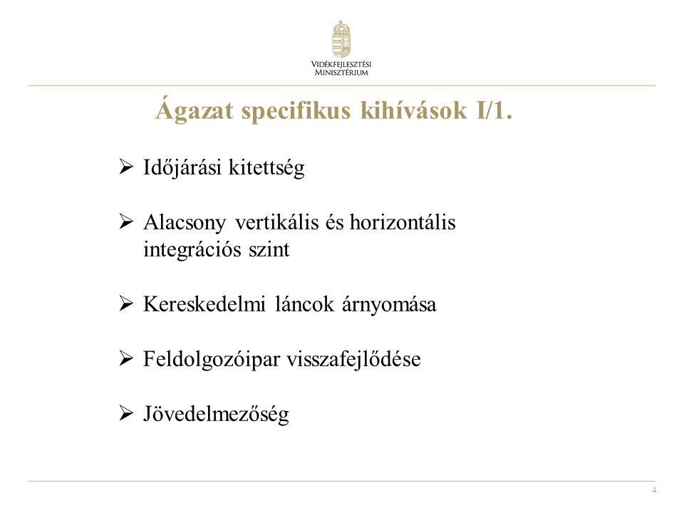 4 Ágazat specifikus kihívások I/1.  Időjárási kitettség  Alacsony vertikális és horizontális integrációs szint  Kereskedelmi láncok árnyomása  Fel