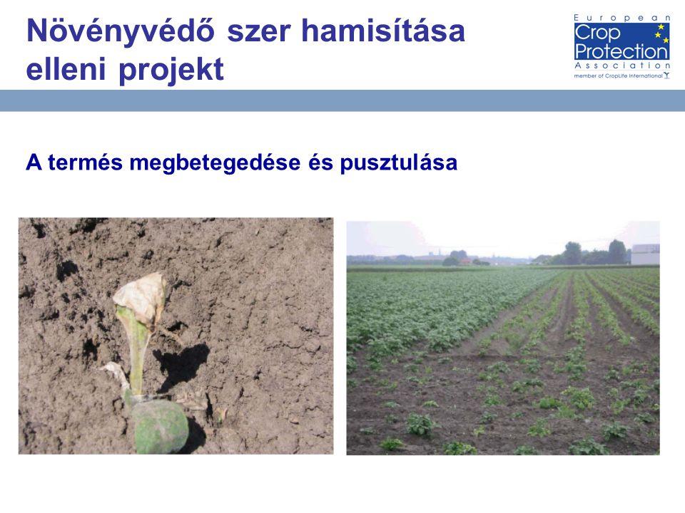 AEB Встреча за круглым столом, 10 матра 2010 года Москва 11 A termés megbetegedése és pusztulása Növényvédő szer hamisítása elleni projekt