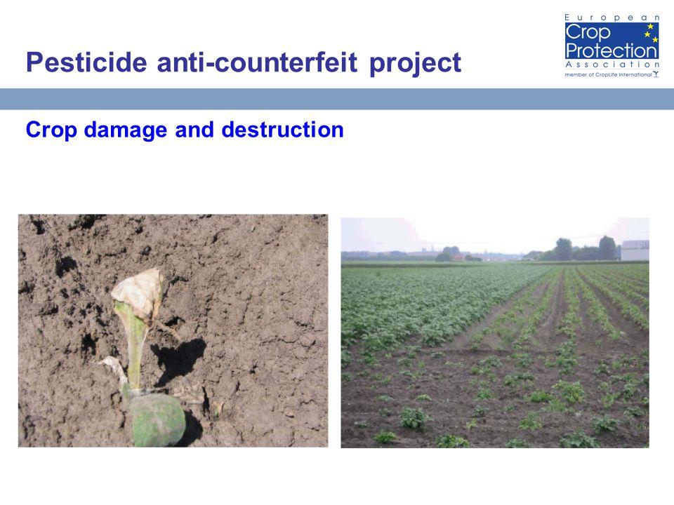 AEB Встреча за круглым столом, 10 матра 2010 года Москва 29 Crop damage and destruction Pesticide anti-counterfeit project
