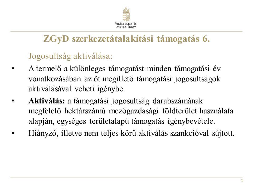 8 ZGyD szerkezetátalakítási támogatás 6.