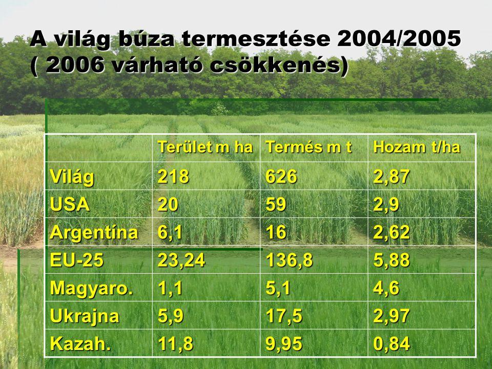 A világ búza termesztése 2004/2005 ( 2006 várható csökkenés) Terület m ha Termés m t Hozam t/ha Világ2186262,87 USA20592,9 Argentína6,1162,62 EU-2523,24136,85,88 Magyaro.1,15,14,6 Ukrajna5,917,52,97 Kazah.11,89,950,84