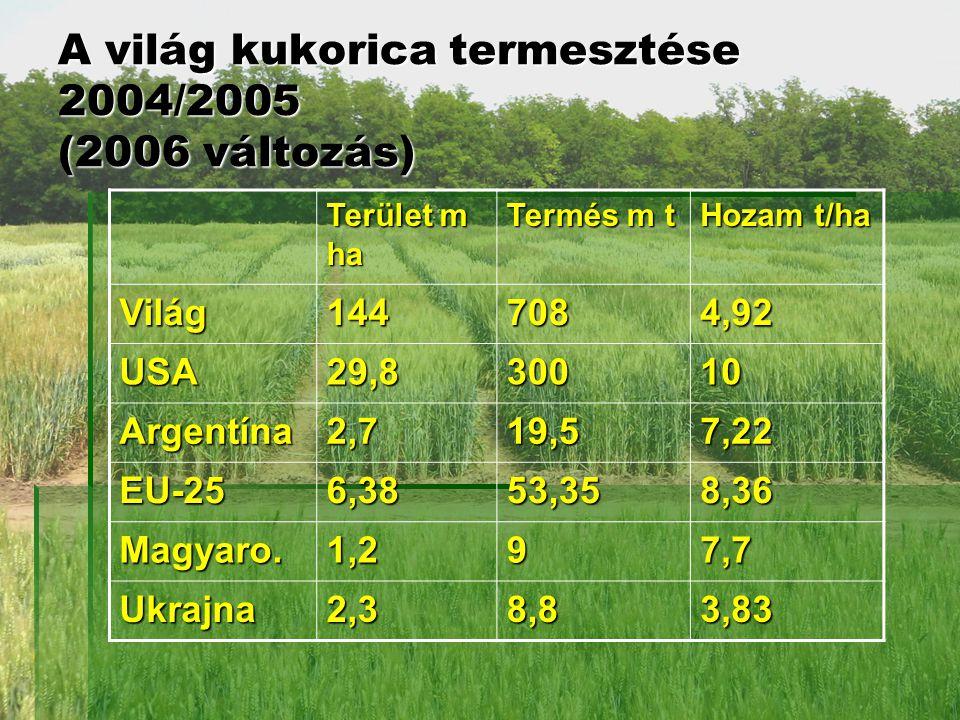 A világ kukorica termesztése 2004/2005 (2006 változás) Terület m ha Termés m t Hozam t/ha Világ1447084,92 USA29,830010 Argentína2,719,57,22 EU-256,3853,358,36 Magyaro.1,297,7 Ukrajna2,38,83,83
