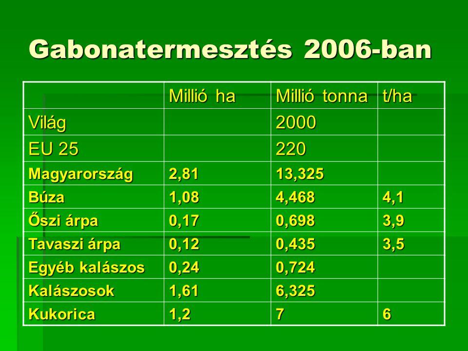 Gabonatermesztés 2006-ban Millió ha Millió tonna t/ha Világ2000 EU 25 220 Magyarország2,8113,325 Búza1,084,4684,1 Őszi árpa 0,170,6983,9 Tavaszi árpa 0,120,4353,5 Egyéb kalászos 0,240,724 Kalászosok1,616,325 Kukorica1,276