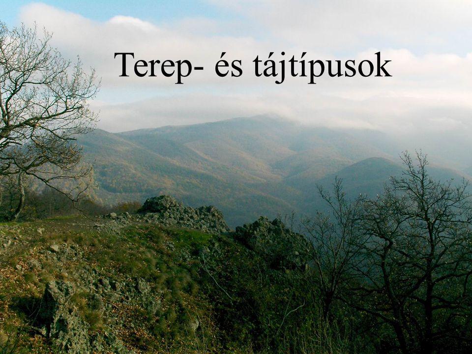Dombvidék Átmenet a hullámos vidék és a hegyvidék között Dombsorok, dombcsoportok jellemzik A dombok lejtői enyhék Maximum 100 méter magasak Szántók és legelők borítják Lassabb mozgást tesz lehetővé